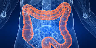 Increasing Disparities In The Age Related Incidences Of Colon And Rectal Cancers In The United States 1975 2010 Presidential